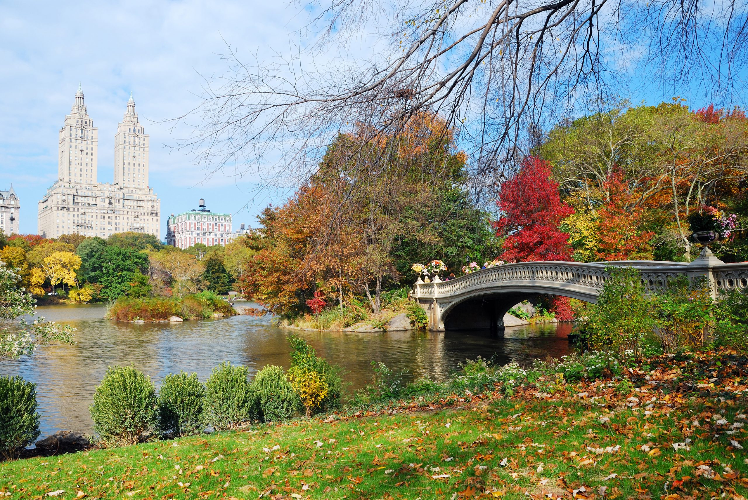 Central Park in fall colors. One of the best free things to do in new york. best things to do in nyc