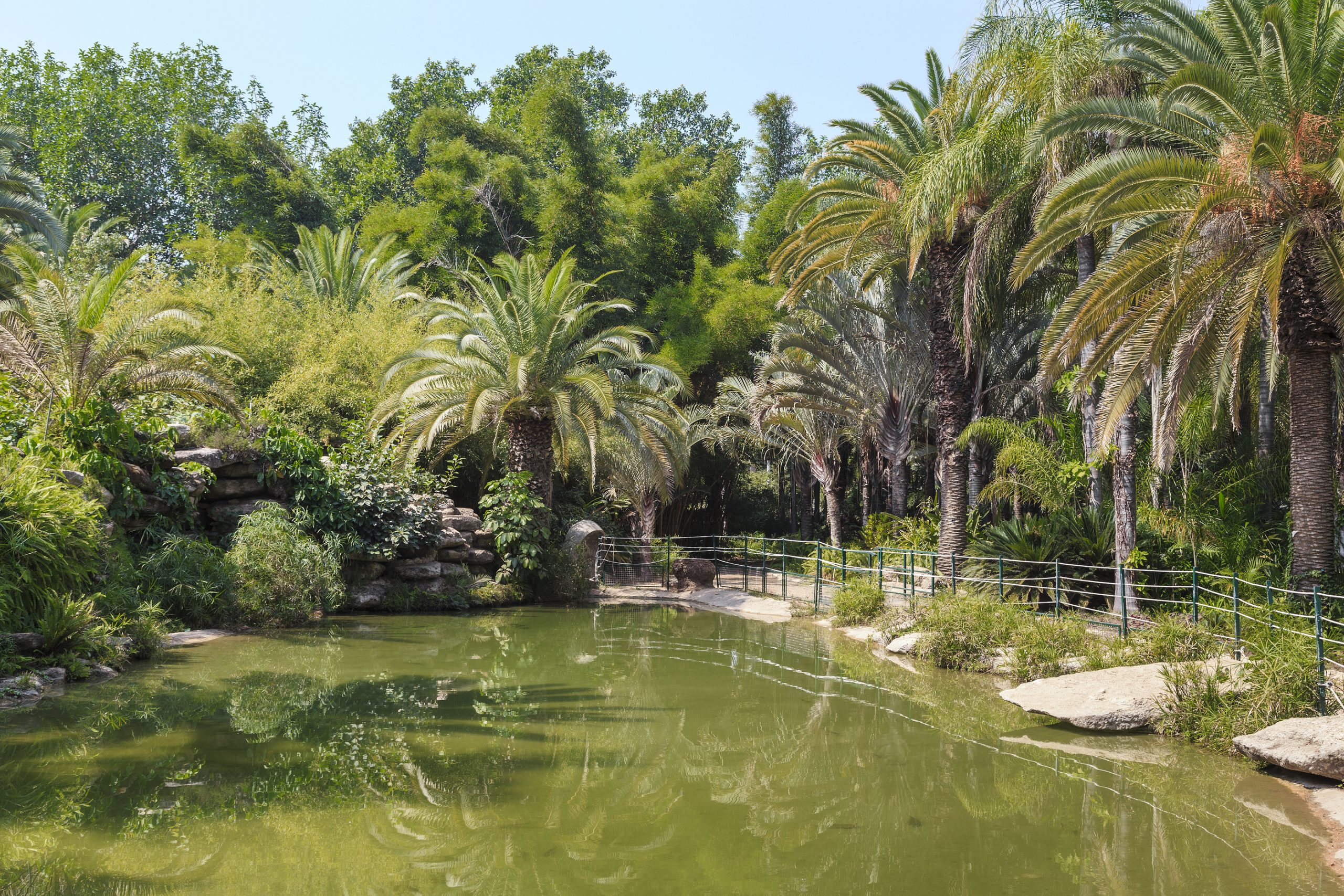 The Tropical Garden of the Yarkon Park - tel aviv top 10