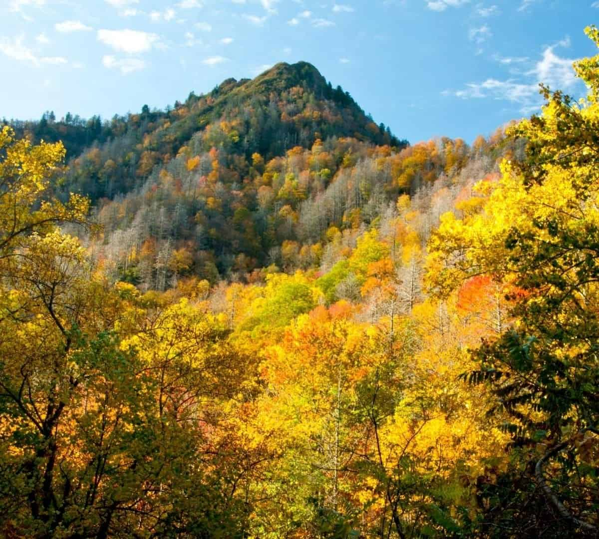 The Great Smoky Mountain National Park is in the top national parks in usa